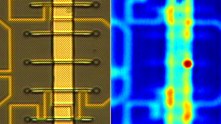 Optical and susceptibility image of a sample